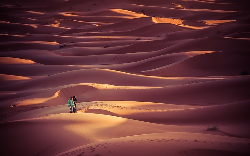 /Portals/0/EasyDNNRotator/733/News/aid14541454bigstock-People-Walking-In-The-Dunes-Of-91095905.jpg