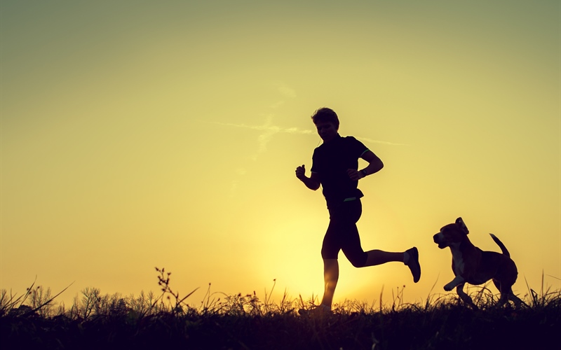 /Portals/0/EasyDNNRotator/733/News/aid1464bigstock-Evening-Jogging-With-Beagle-Pe-90976490.jpg